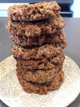 oat-chocolate-chips-cookies