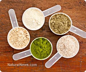Powders-Protein